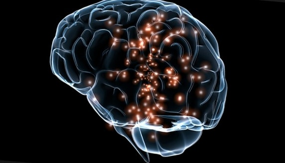 Звук воспринимается мозгом